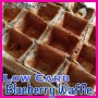 low carb blueberry waffles